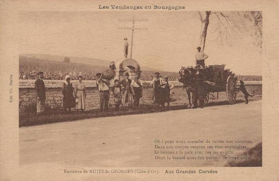 75a37110a1d530 le forum de LPV La passion du vin. un media incontournable - La ...